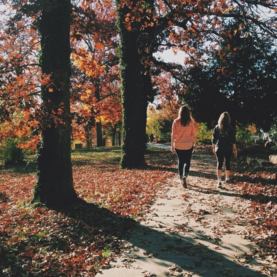friend pathway